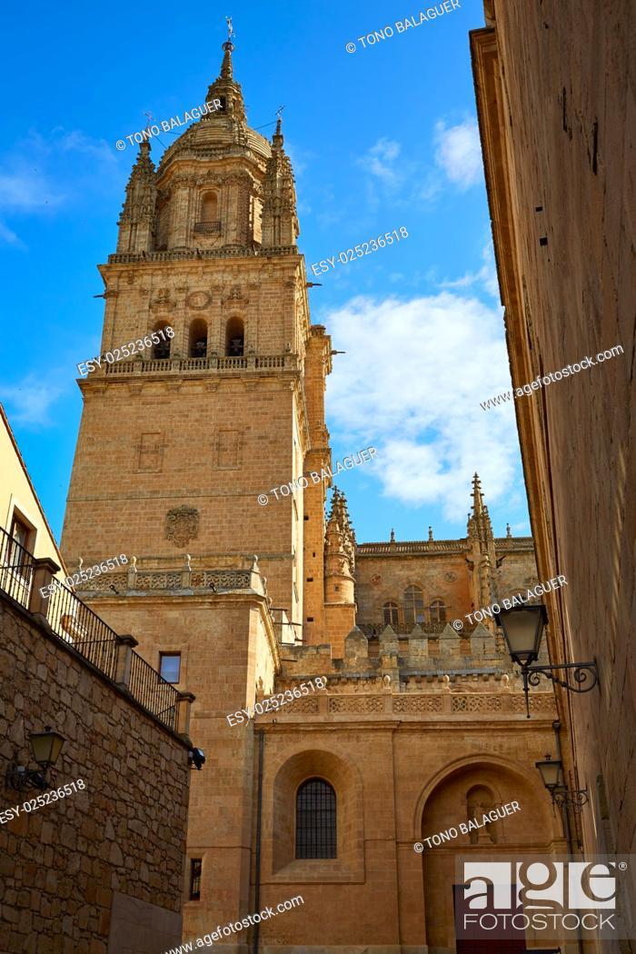 Stock Photo: Salamanca Cathedral facade in Spain by the Via de la Plata way to Santiago.