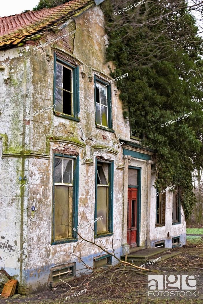 Stock Photo: Abandoned house overgrown by tree.