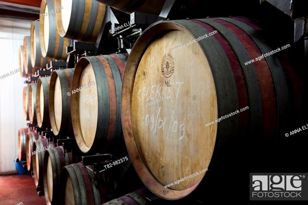 Stock Photo: organic wine barrels in the Alpujarras de Almeria,barriles de vino ecologico en las Alpujarras de Almeria.