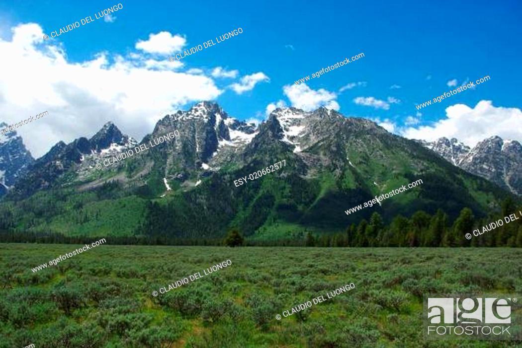 Stock Photo: Grand Tetons, Wyoming.