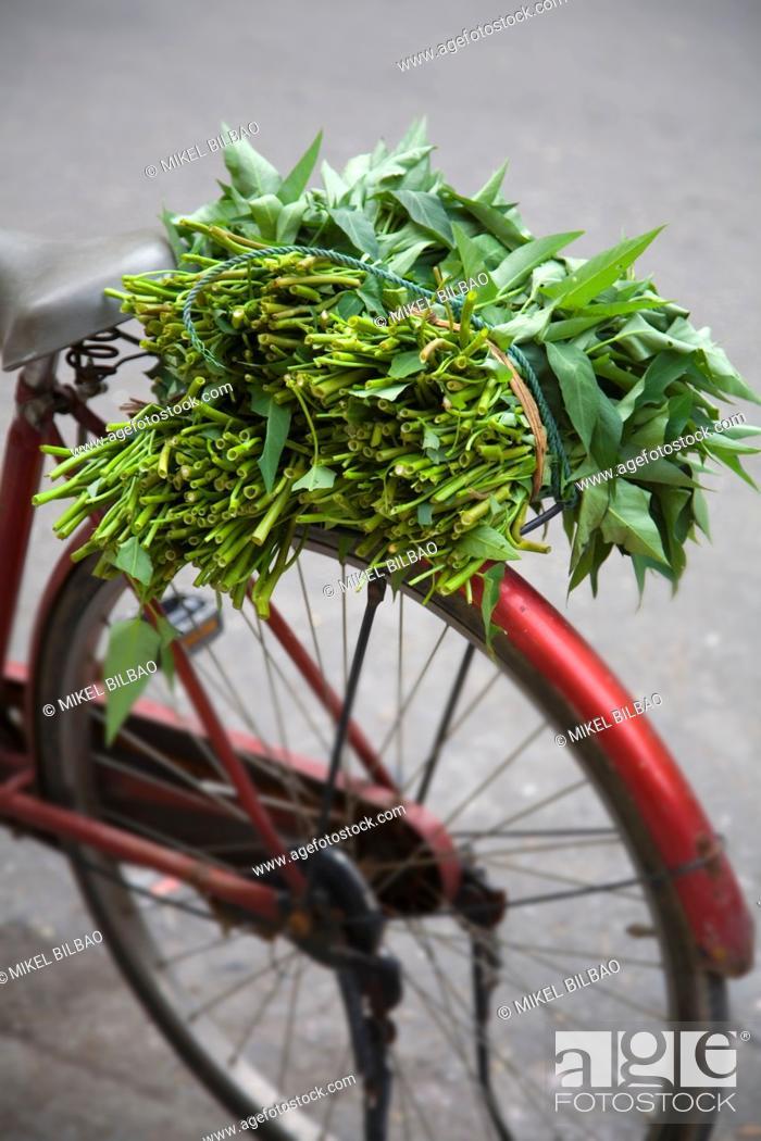 Stock Photo: Seller's bicycle, Hanoi, Vietnam.