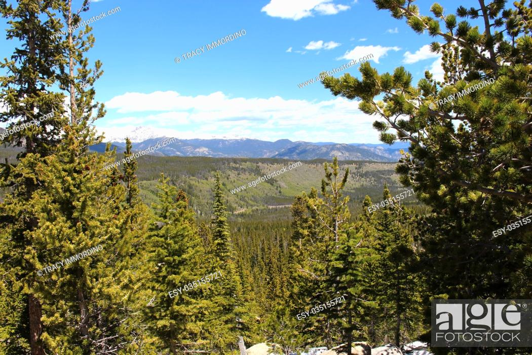 Stock Photo: A scenic vista of a pine filled valley from the Glacier Gorge Trail in the Rocky Mountain National Park, Colorado, USA.