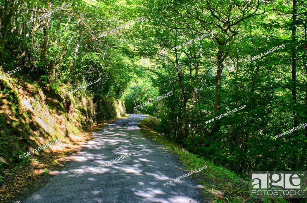 Imagen: Hiker walking through the Naredo Valley and Mofusu forest, Asturias, Spain.