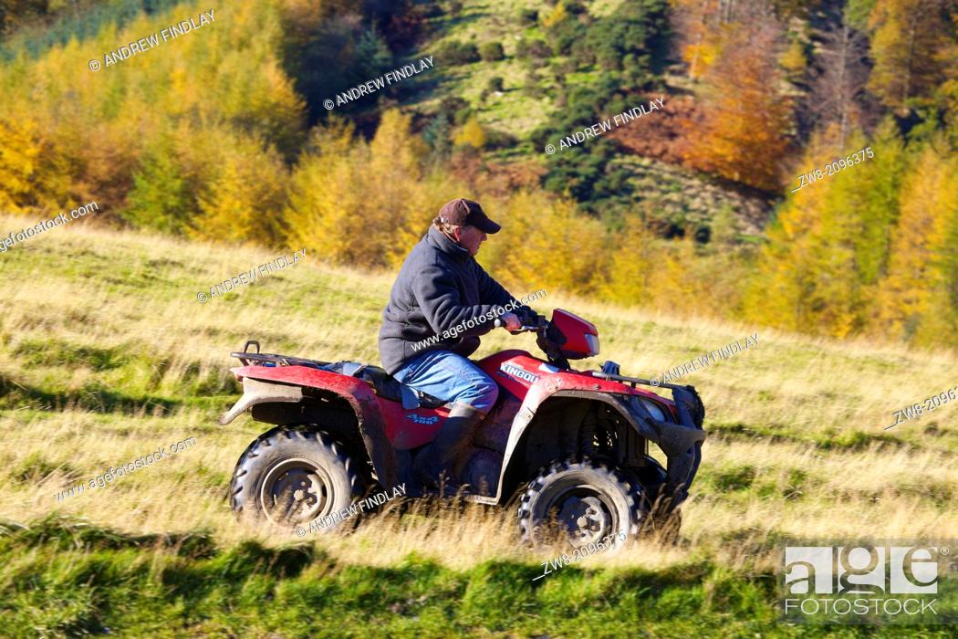 Stock Photo: Farmer on Quad Bike with woods in background. Autumn.