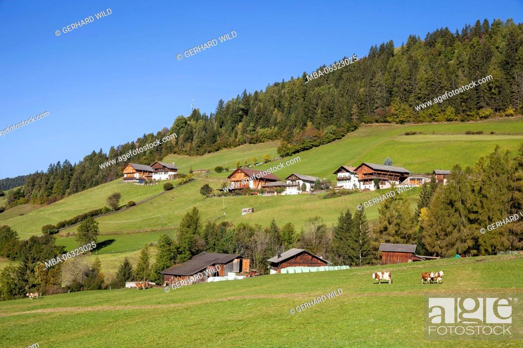 Farms close St  Magdalena, Funes Valley, South Tyrol, Italy, Europe