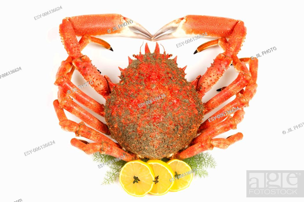 Stock Photo: Spiny Spider Crab with lemon and fennel.