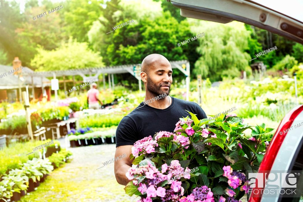 Stock Photo: Car parked at a garden centre, a man loading flowers into the boot.