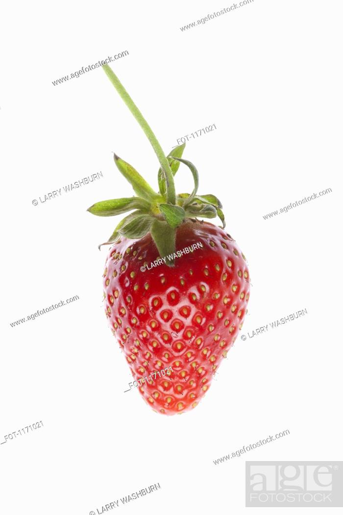 Stock Photo: A single strawberry on a white background.
