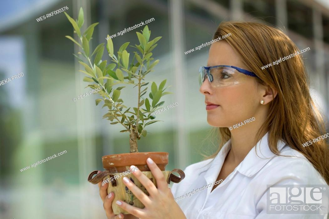 Stock Photo: Europe, Germany, North Rhine Westphalia, Duesseldorf, Young student with plant.