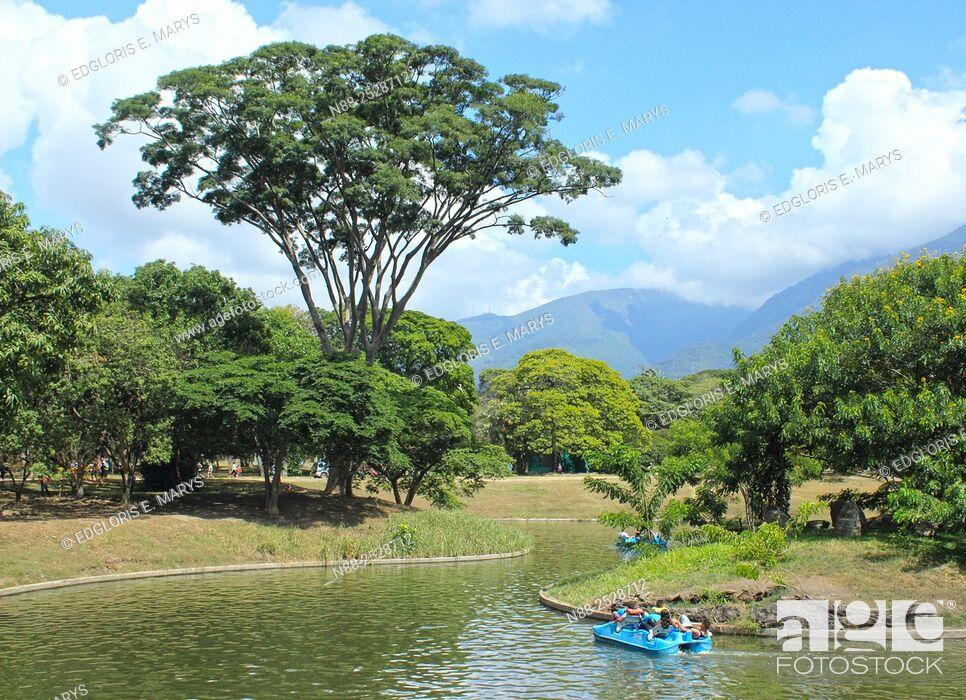 Stock Photo: People boating in boat lake, Parque del Este, Caracas, Venezuela.