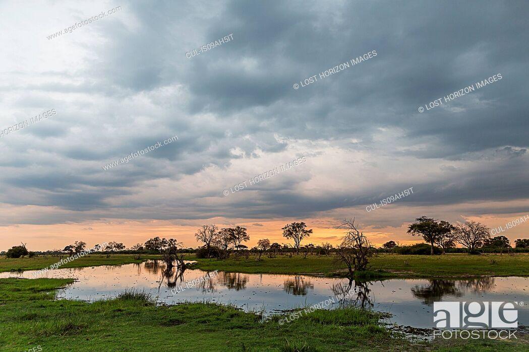 Stock Photo: Silhouetted trees and swamp, Okavango Delta, Chobe National Park, Botswana, Africa.