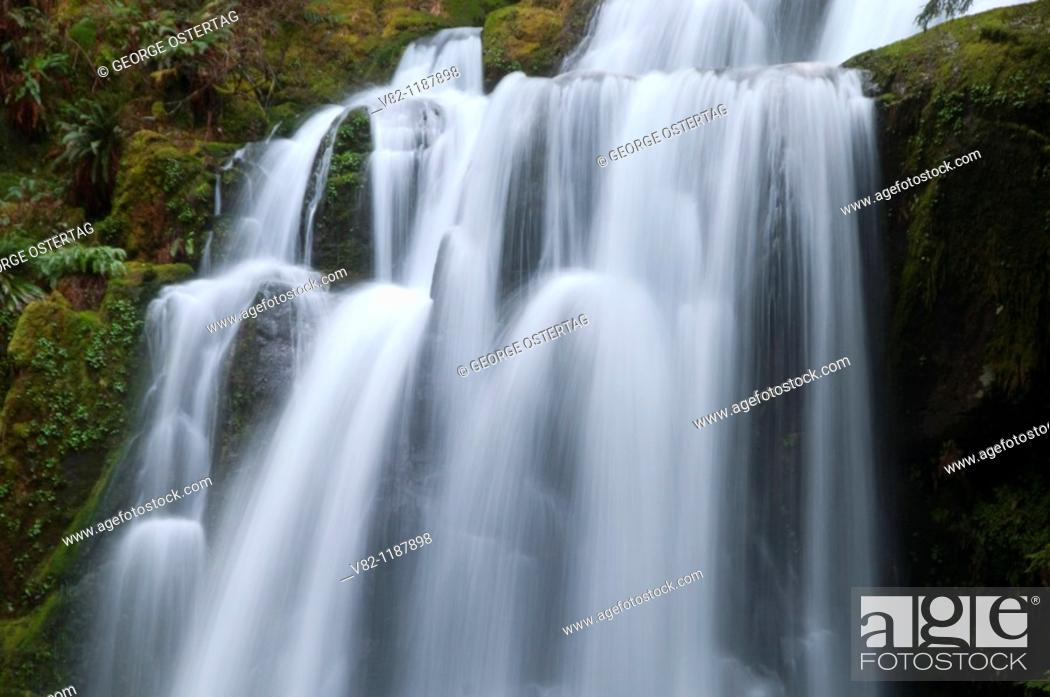 Stock Photo: Upper Kentucky Falls, Kentucky Falls Special Interest Area, Siuslaw National Forest, OR.