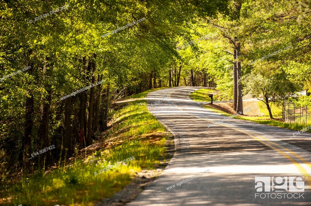 Stock Photo: A narrow winding 2 lane country road with a double yellow line flanked by trees in the spring in Alabama, USA.