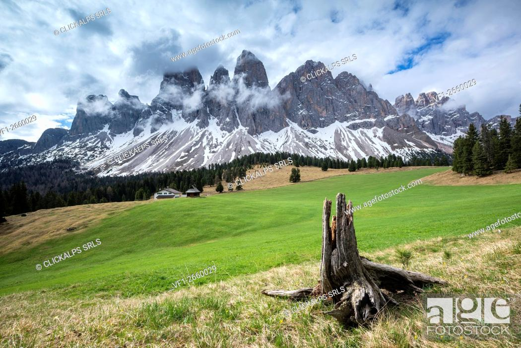 Imagen: Funes Valley, Dolomites, South Tyrol, Italy. View from Malga Glatsch to the peaks of the Odle.