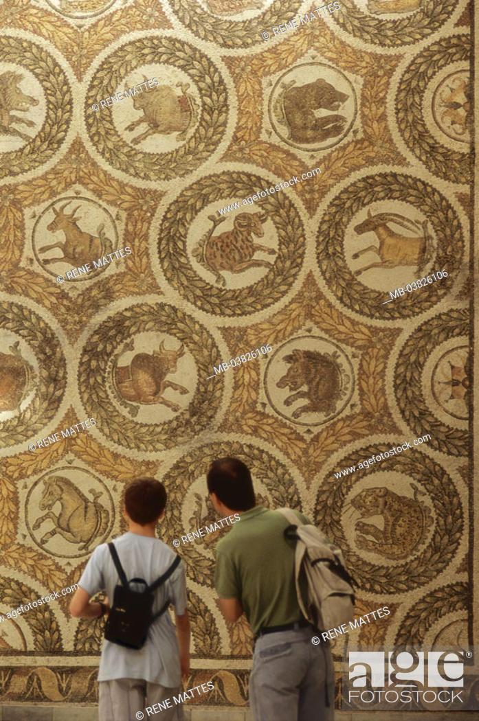 Stock Photo - Tunisia, Tunis, Bardo museum, Roman mosaic, representation, animal heads, Visitors, view from behind, North Africa, destination, capital, ...