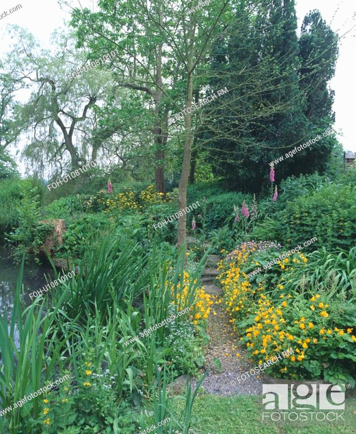Small Tree And Yellow Spring Plants In Border Beside Path In