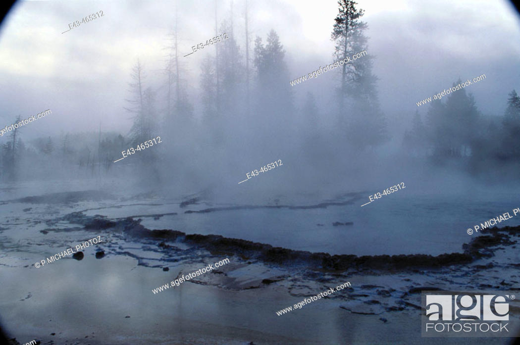 Stock Photo: Misty geyser and trees, Yellowstone NP, USA.
