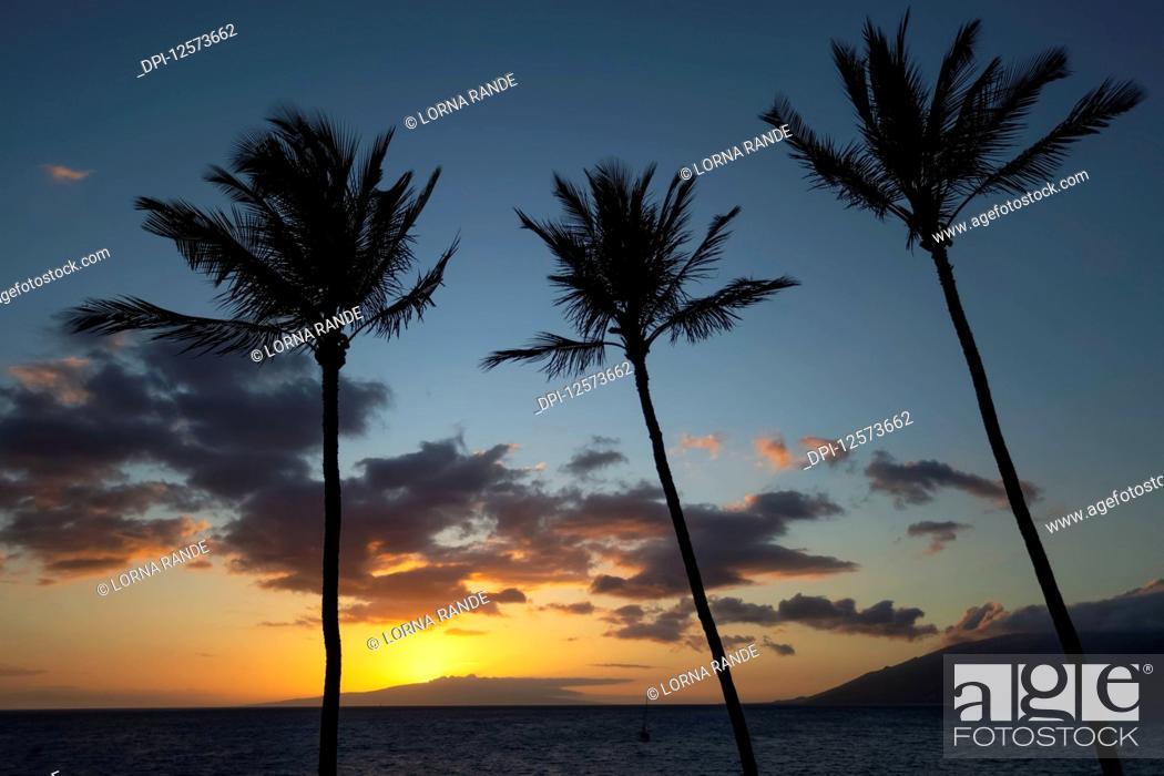 Stock Photo: Kamaole One and Two beaches, Kamaole Beach Park; Kihei, Maui, Hawaii, United States of America.