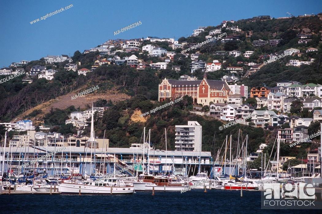 Stock Photo: New Zealand - North Island - Wellington-Yacht harbor / Mt Victoria.