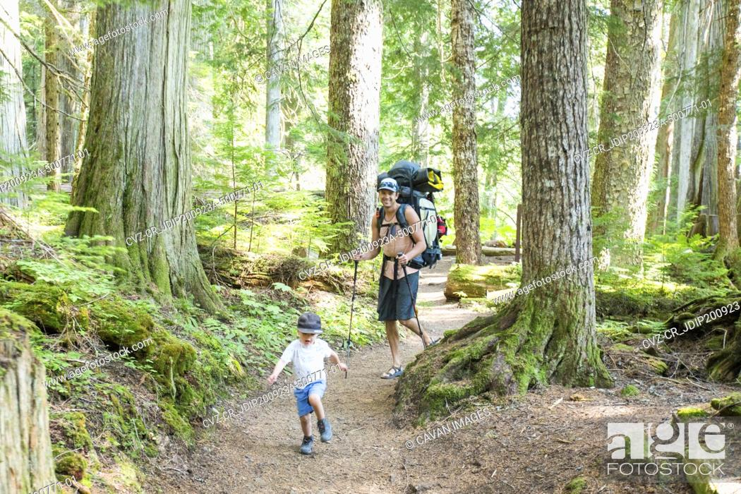 Photo de stock: Father and son hiking on trail through lush old growth forest.