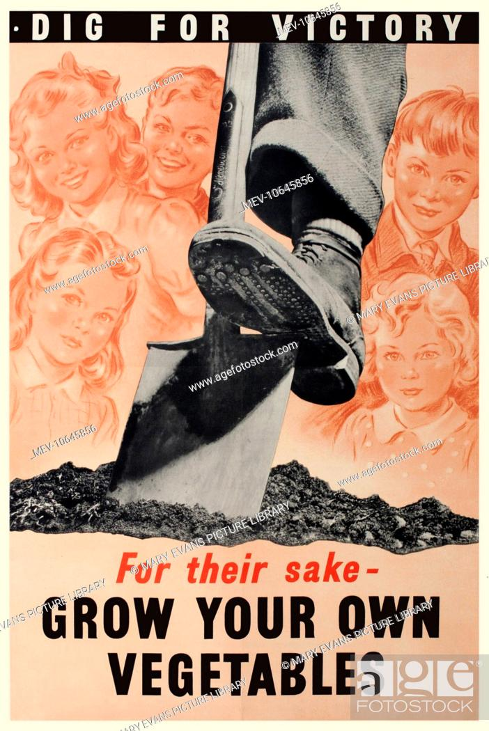 Stock Photo Ww2 Home Front Poster Dig For Victory