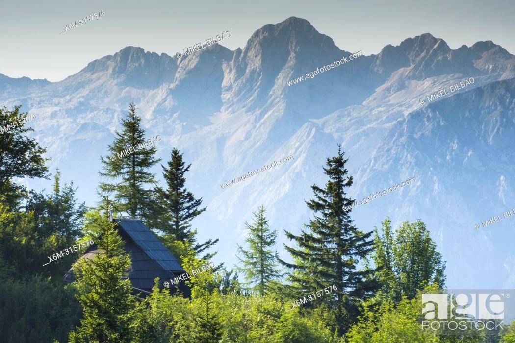 Photo de stock: Mountains in summer and hut. Velika Planina sky area. Upper Carniola region. Slovenia, Europe.