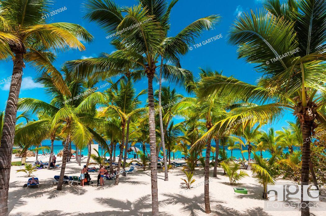 Stock Photo: beach; Riu Palace; hotel; Punta Cana; Dominican Republic; Caribbean.