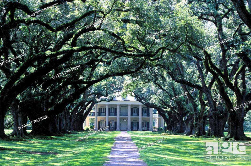 Stock Photo: United States, Louisiana, Plantation Road (n°18), la Vacherie, Oak Alley Plantation.