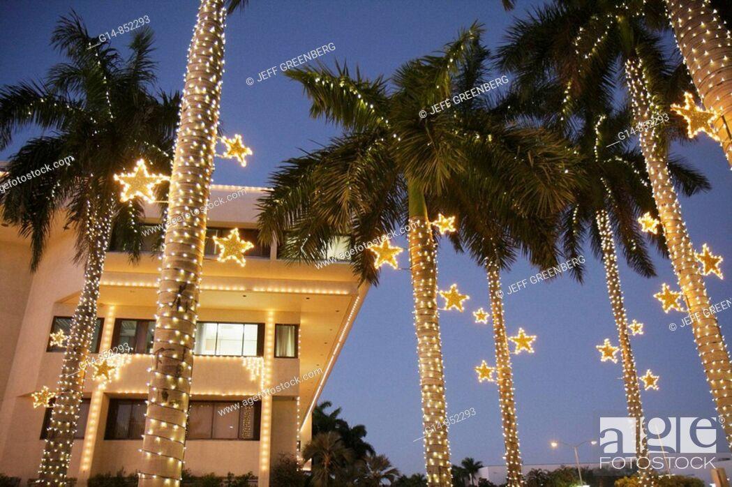 Stock Photo: Florida, Miami Beach, City Hall, palm trees, dusk, Christmas lights, winter holiday, season, seasonal, decoration, star, frond, tropical, tradition,.