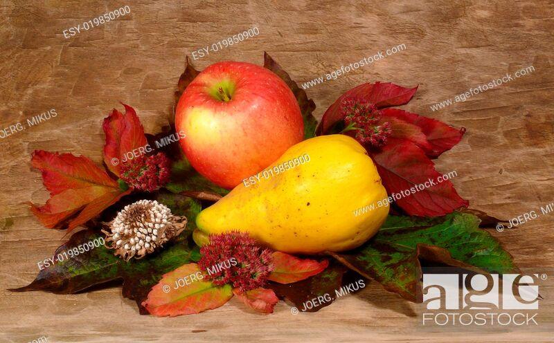 Stock Photo: herbstliches arrangement.