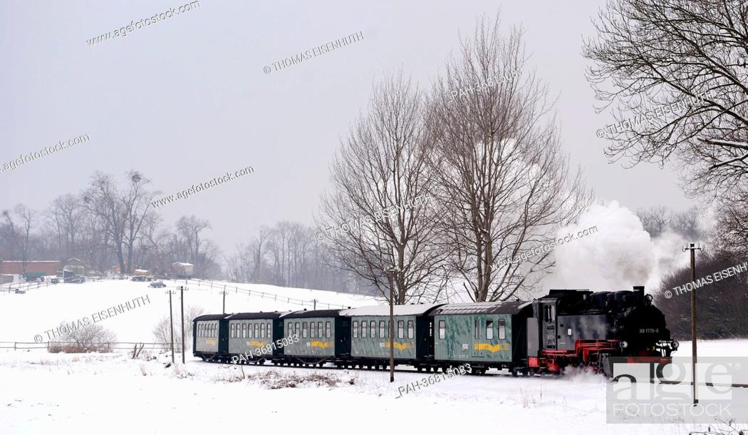 Stock Photo: The Loessnitzgrundbahn runs between Moritzburg and Friedewald on the Dippelsdorfer dam near Friedewald, Germany, 25 January 2013.