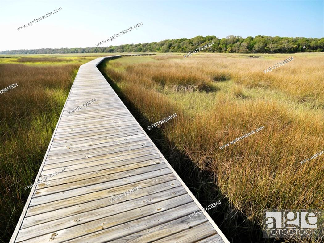 Stock Photo: Wooden boardwalk stretching over marsh at Bald Head Island, North Carolina.