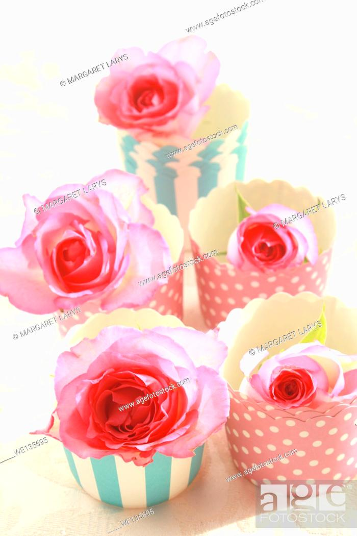 Stock Photo: Pink roses in muffiin cups, still life.