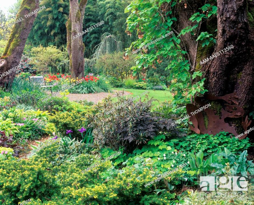Stock Photo: Shade Garden Mixes April Bulbs, Perennials, Vines U0026 Shrubs, O