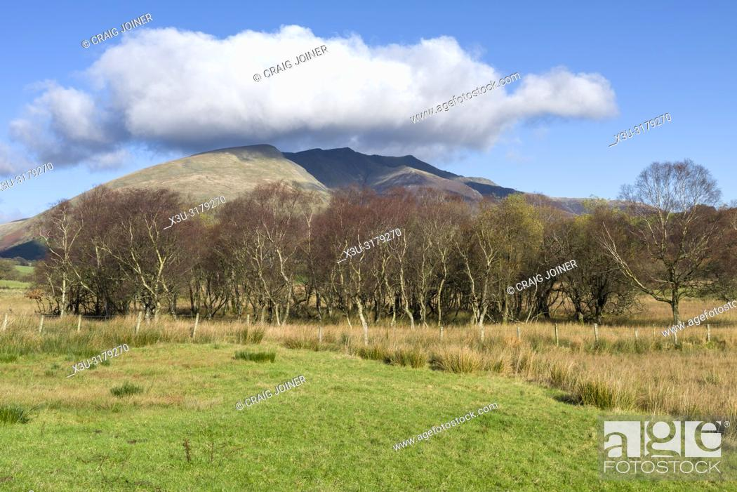 Stock Photo: Blencathra fell from Dale Bottom in the English Lake District National Park, Cumbria, England.