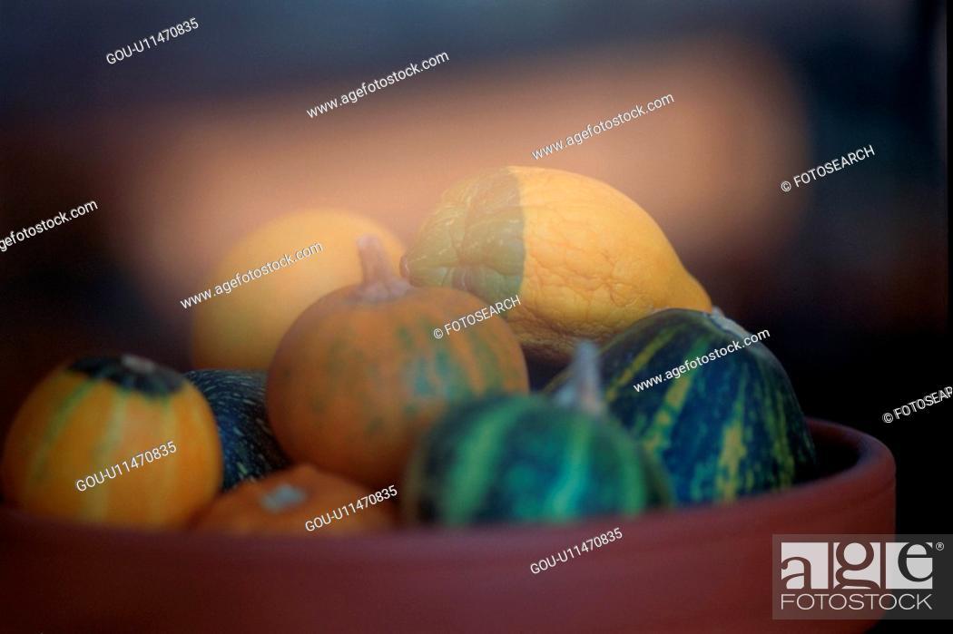 Stock Photo: Pumpkins In Flower Pot.