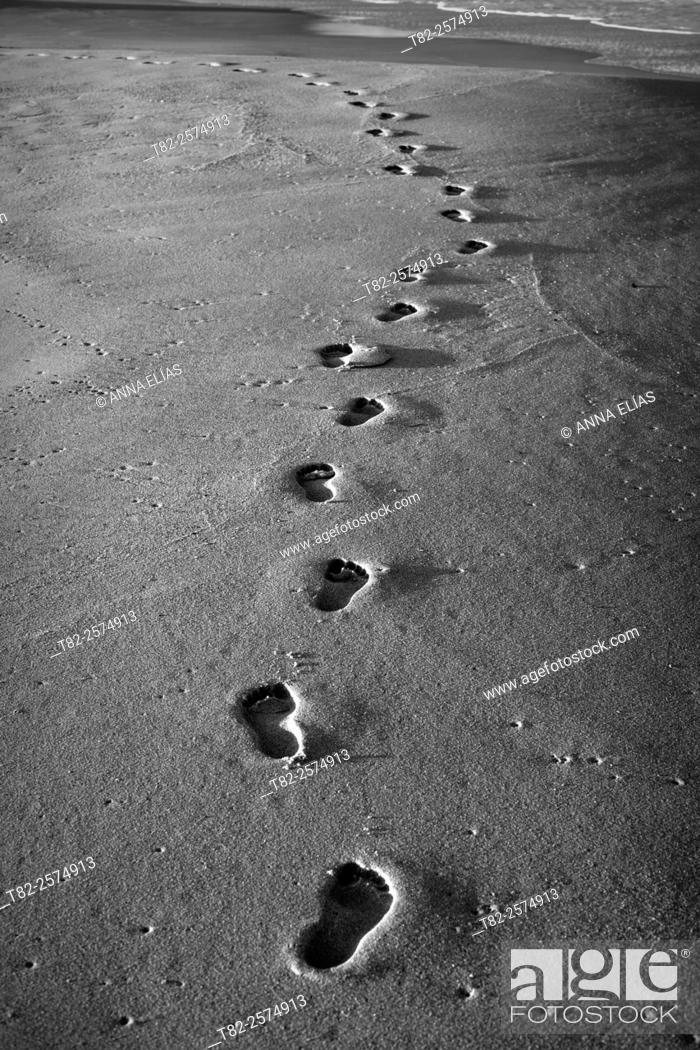 Stock Photo: footprints on sand at the beach in black and white.