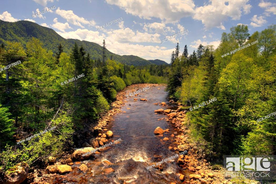 Stock Photo: Brook, Gros Morne National Park, UNESCO Heritage Site, Newfoundland.