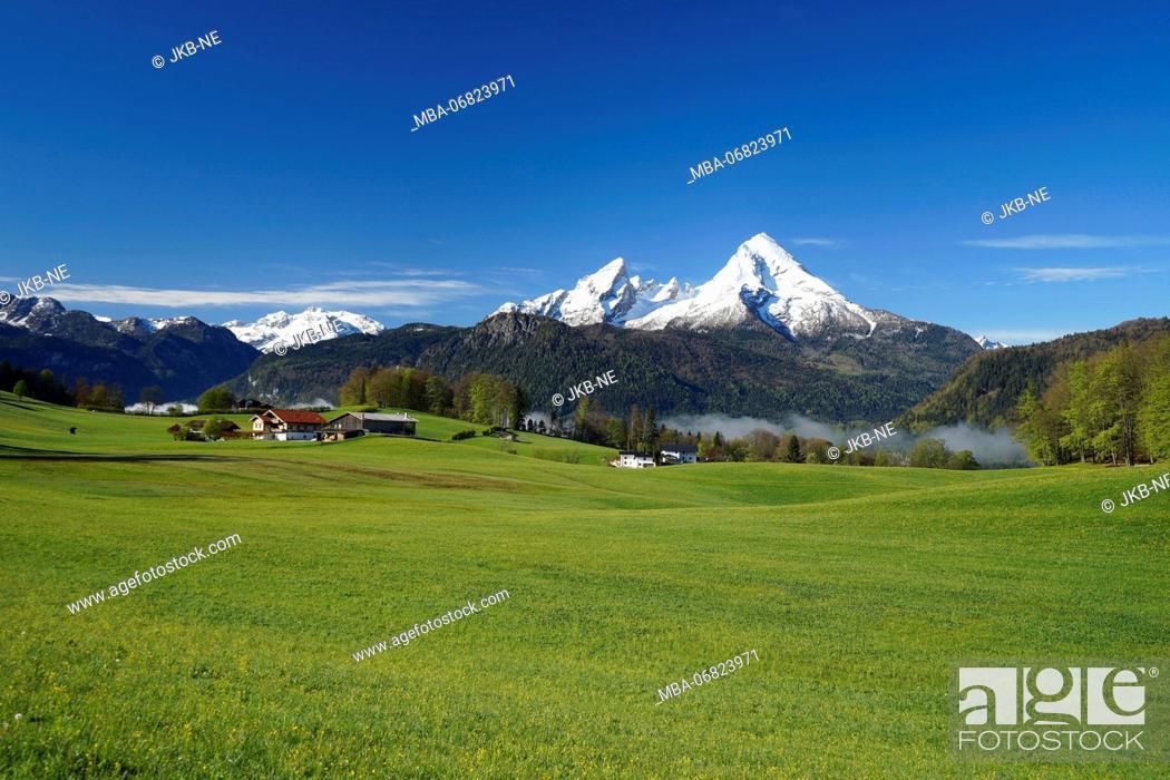 Photo de stock: Germany, Bavaria, Upper Bavaria, Berchtesgadener Land, Bischofswiesen, Watzmann, mountain pasture.