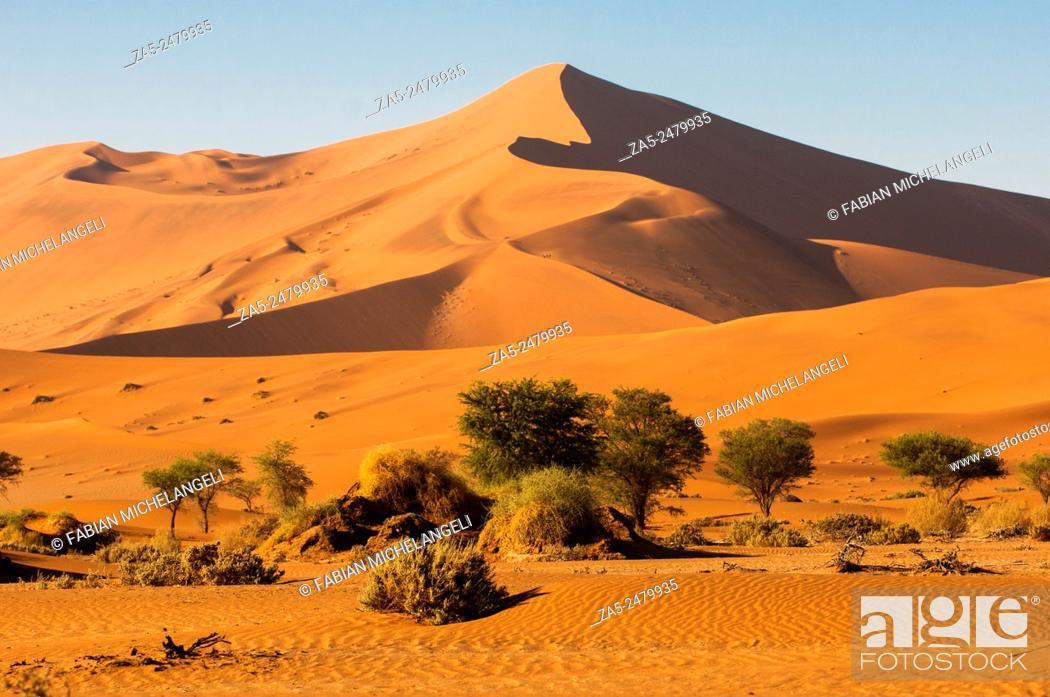 Stock Photo: Red sand dunes in the Sossusvlei valley. Namib Naukluft National Park. Namib Desert, Namibia.