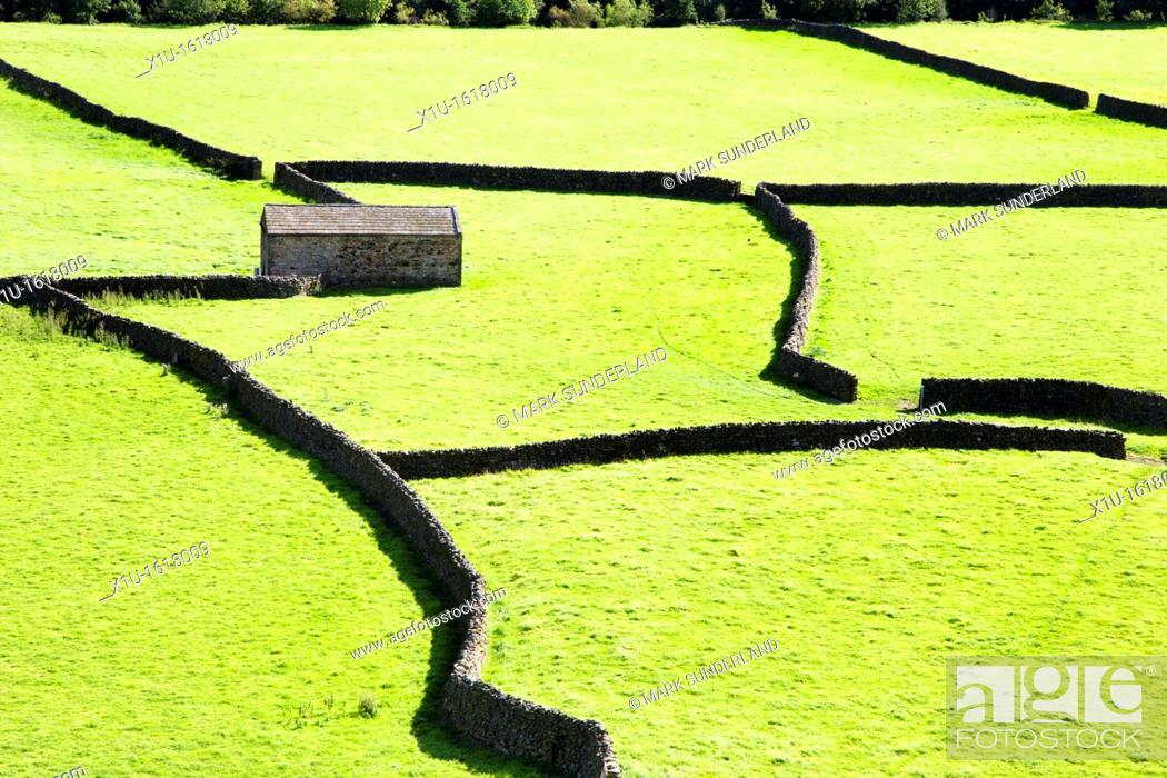 Imagen: Field Barns at Gunnerside Swaledale Yorkshire Dales England.