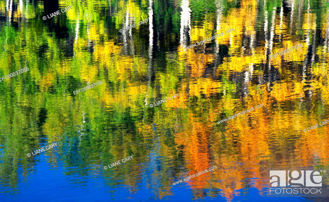 Stock Photo: autumn reflections.