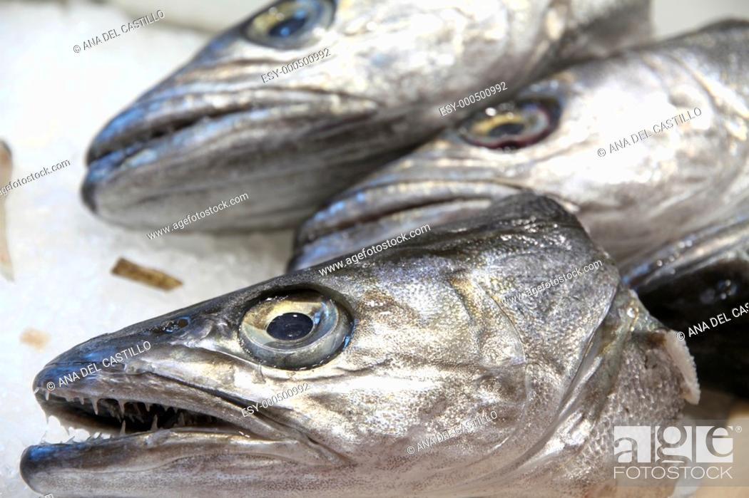 Photo de stock: Heads of hakes at a fishmonger's, Burjassot market, Valencia province, Spain.