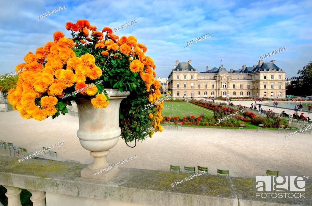 Stock Photo: Paris, France. Jardin du Luxembourg (6th Arr) Palais du Luxembourg and flowers.