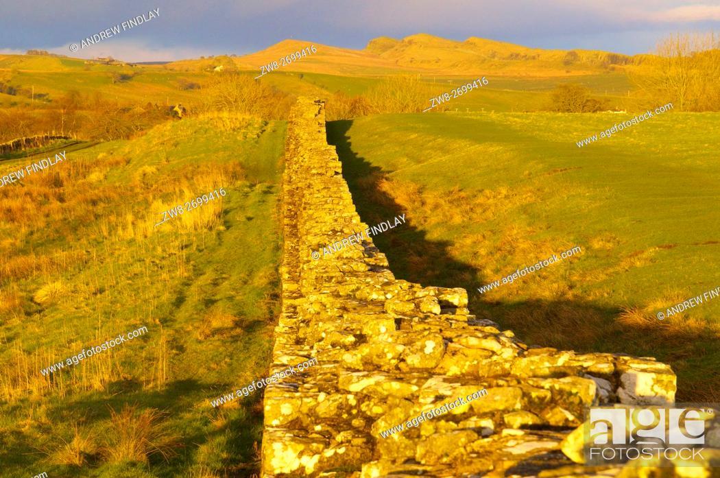 Stock Photo: Golden evening light. Hadrian's Wall, Hadrian's Wall, World Heritage Site, Birdoswald, Cumbria, England, United Kingdom, Europe.