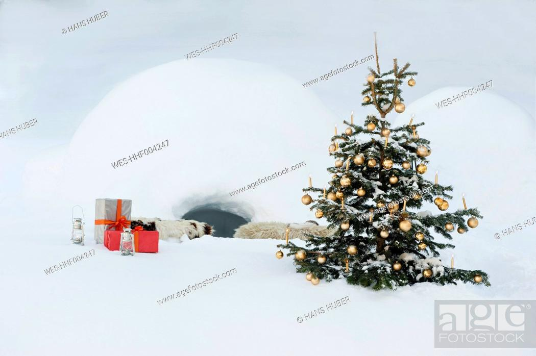 Stock Photo: Austria, Salzburg County, Christmas tree and presents in snow in front of igloo.