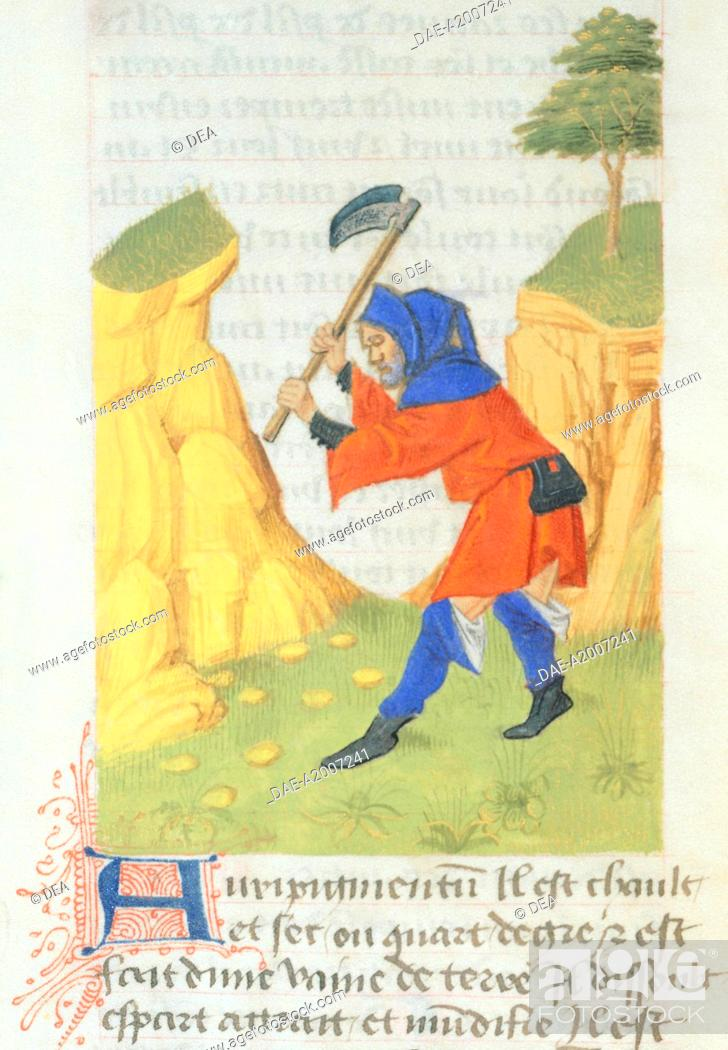Stock Photo: A gold prospector, miniature from De diversis Herbis, Latin manuscript by Dioscorides e Lat 928 folio 17 recto, France, late 14th Century.