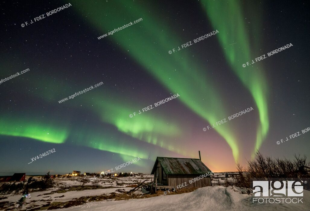 Stock Photo: Aurora borealis above wooden house by Night, Iceland.