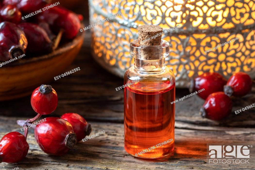 Stock Photo: A bottle of rosehip seed oil and dried berries.