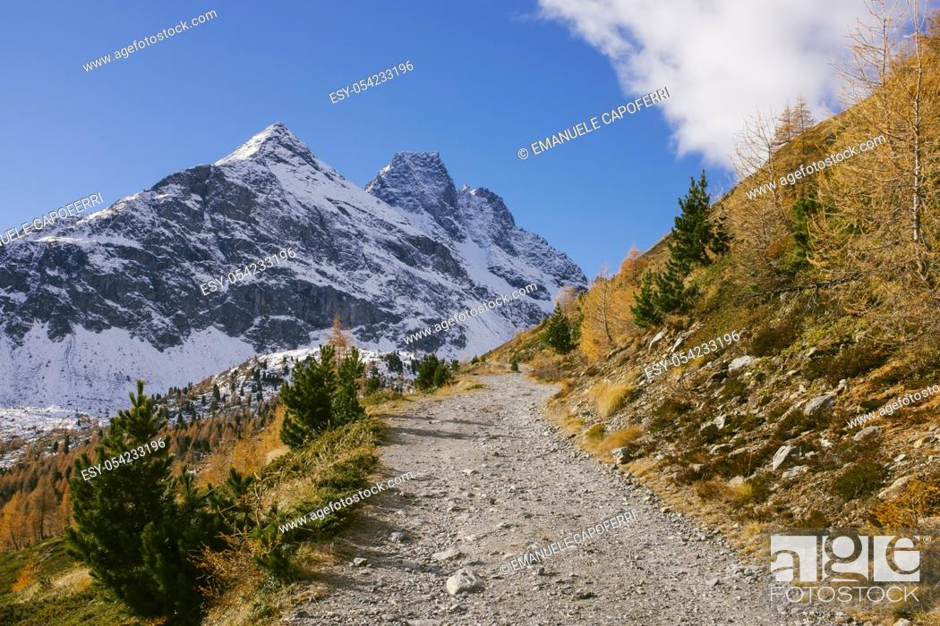 Imagen: Autumn in the mountains, path that leads to Val Viola, Valdidentro, Alta Valtellina, Lombardy, Italy.